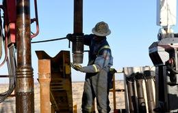 Giá dầu thô chỉ ở mức 40 - 50 USD/thùng vào năm 2021