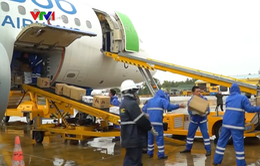 Các hãng hàng không vận chuyển miễn phí hàng hóa cứu trợ miền Trung
