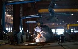 IMF hạ dự báo tăng trưởng kinh tế châu Á năm 2020
