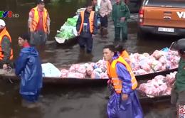 Quảng Trị cần điều phối hàng cứu trợ