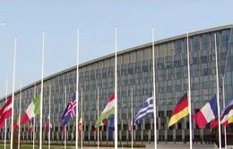 Năm thứ 6 liên tiếp NATO tăng chi tiêu quốc phòng