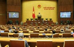 Hôm nay (24/10), Quốc hội nghe và thảo luận nhiều dự án luật