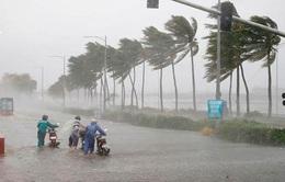 Tác động của bão số 8 không thể lường trước