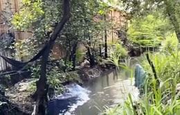TP.HCM lên kế hoạch xử lý triệt để các cơ sở giặt, nhuộm gây ô nhiễm môi trường