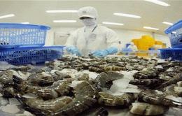 Thủy sản Minh Phú kháng cáo kết luận của Hải quan Hoa Kỳ