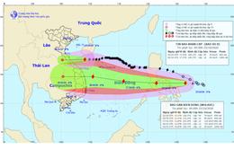 Bão số 8 giảm cấp tiến gần đất liền, bão số 9 có khả năng mạnh thêm