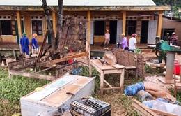 Chồng chất khó khăn, các trường học miền Trung đứng trước nguy cơ dịch bệnh, bỏ học, tụt hậu...