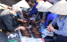 Làng bắt chuột Hải Dương vào mùa đắt hàng