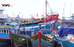Quảng Ngãi: Tàu thuyền đã vào nơi tránh trú bão an toàn