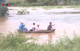 Bão số 9 gây thiệt hại tại tỉnh Bình Định