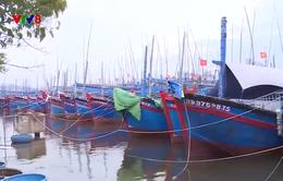 Kiểm tra thiệt hại do bão số 9 tại tỉnh Bình Định