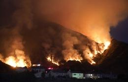 Cháy rừng thiêu rụi diện tích lớn ở California