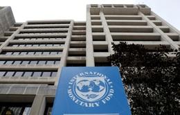 IMF: Đầu tư công đóng vai trò then chốt trong phục hồi hậu COVID-19