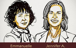 Giải Nobel Hóa học 2020 vinh danh hai nhà khoa học phát triển phương pháp chỉnh sửa gene