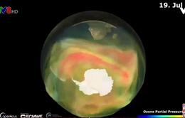 Cảnh báo lỗ hổng lớn tầng ozone tại Nam Cực