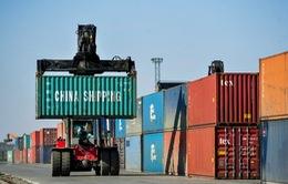WTO: Giao dịch hàng hóa toàn cầu giảm 9,2% trong năm 2020