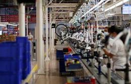 """Ngành xe đạp Bồ Đào Nha """"ăn nên, làm ra"""" nhờ COVID-19"""