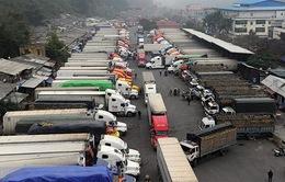 Trung Quốc tăng kiểm soát chất lượng, xuất khẩu nông sản Việt gặp khó