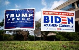 Tấn công mạng - Nguy cơ thực sự đe dọa cuộc bầu cử Tổng thống Mỹ?