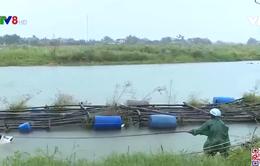 Thừa Thiên - Huế: nguy cơ xảy ra lũ lớn