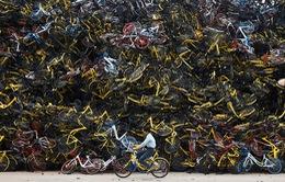 """""""Nghĩa địa"""" xe đạp tại Trung Quốc"""