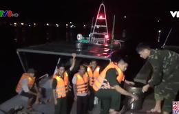 Bình Định: Cứu 11 ngư dân gặp nạn do tàu chìm