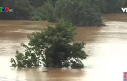 Hà Tĩnh: Thủy điện Hố Hô xả tràn gây ngập cục bộ