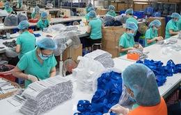 Phục hồi thị trường lao động: Khởi sắc nhưng thiếu tính bền vững