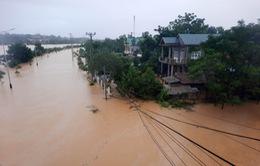 Lũ lớn gây ngập diện rộng ở Quảng Trị, 1 người chết, 8 người mất tích