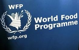 Giải thưởng danh giá Nobel Hòa bình 2020 tôn vinh Chương trình Lương thực Thế giới (WFP)