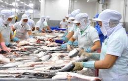 Trung Quốc tăng cường kiểm tra thuỷ sản đông lạnh nhập khẩu