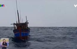 Mong ngóng người trở về từ biển