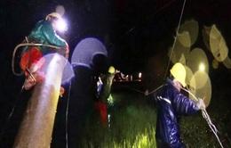 Xuyên đêm khắc phục lưới điện hư hỏng do bão số 9