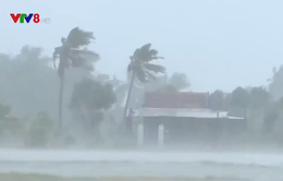 Khánh Hòa ứng phó bão số 12