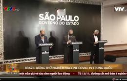 Brazil dừng thử nghiệm vaccine COVID-19 Trung Quốc