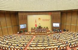 Chính thức thông qua Luật Biên phòng Việt Nam