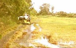 Nông dân oằn mình cứu lúa ngập mùa lũ