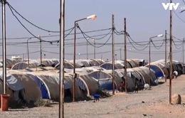 Trại tị nạn Iraq đóng cửa, nguy cơ 100 nghìn người trở thành vô gia cư