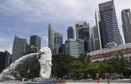 Singapore áp dụng thị thực mới thu hút nhân tài công nghệ