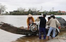 Chủ động ứng phó với ngập lụt vùng trũng thấp