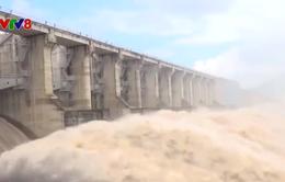 Phú Yên: Điều tiết nước giảm rủi ro các hồ thủy lợi thủy điện