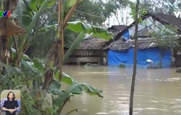 Hàng ngàn hộ dân vùng trũng ở Quảng Trị bị ngập lụt trở lại