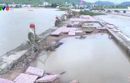Phú Yên khắc phục hậu quả sau bão số 12