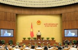 Kỳ họp thứ 10, Quốc hội khóa XIV: Cho ý kiến dự án Luật Phòng, chống ma túy (sửa đổi); biểu quyết 4 Luật và 2 Nghị quyết