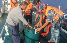 Buôn lậu xăng dầu trên biển ngày càng trắng trợn, tinh vi