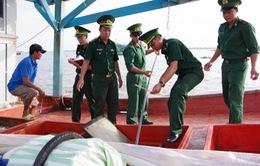 Kiên Giang: Bắt giữ tàu cá vận chuyển dầu trái phép