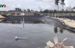 Hỗ trợ người nuôi trồng thủy sản khôi phục sản xuất