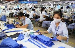 Doanh nghiệp chủ động nắm bắt cơ hội lớn từ Hiệp định RCEP