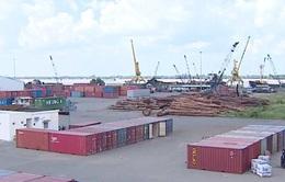 Ngổn ngang logistics vùng ĐBSCL