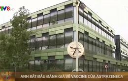 Anh bắt đầu đánh giá về vaccine của AstraZeneca